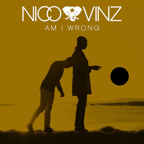 Nico Vinz Am I Wrong bee q unique